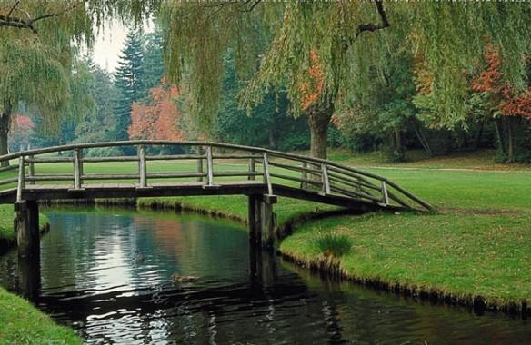 Construindo pontes entre as pessoas